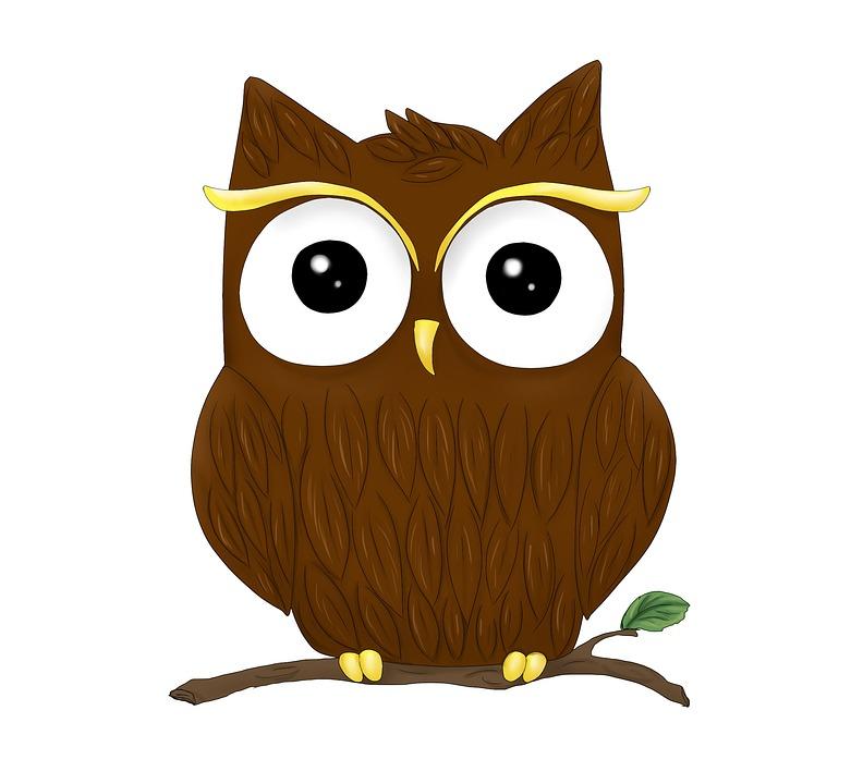 Animal, Owl, Graphic, Bird, Cute, Funny, Wildlife