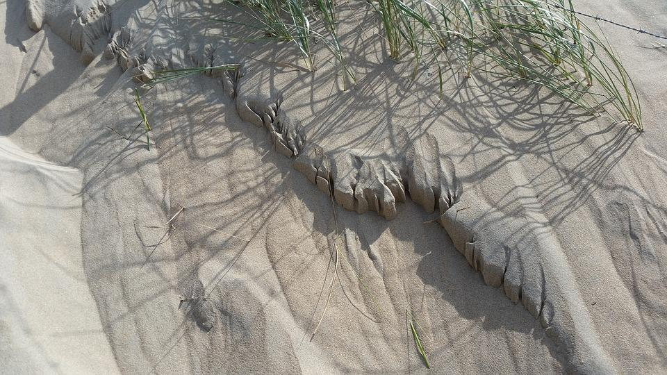 Dunes, Sand, Dune Grass, Sea, Wind