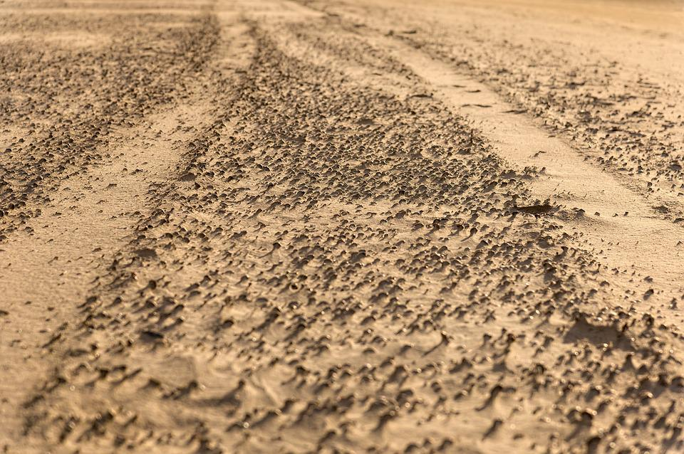 Trace, Sand, Tire Tracks, Sea, Sand Beach, Coast, Wind