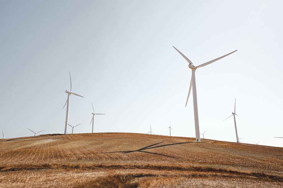Energy, Field, Grass, Wind Turbines, Windmills