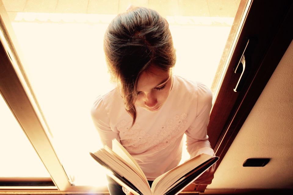Children, Boys, Books, Reading, Studio, Window, Tuft