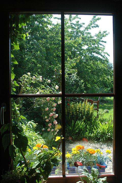 Free Photo Window Garden View Plant Flowers Spring Outlook