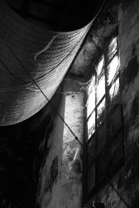 Black And White, Window, Old, Winery, Blind, Esparto
