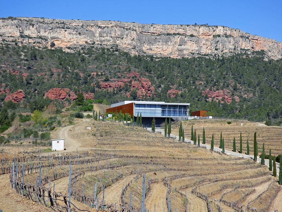 Winery, Vineyards, Priorat, Modern Architecture