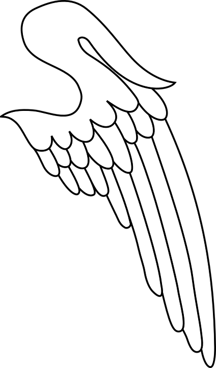 Wing, Heraldry, Symbol, Design, Emblem, Graphic
