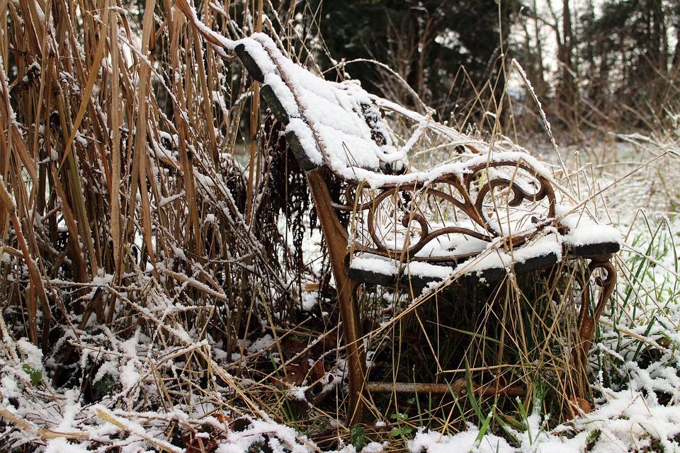 Nature, Bench, Bank, Winter, Wild, Dilapidated, Shabby
