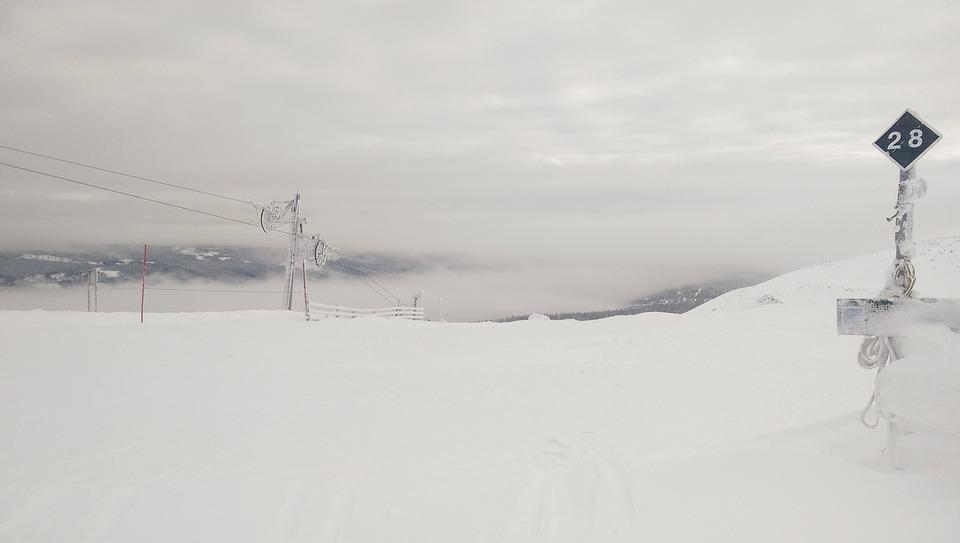 Ski, Winter, Black Run, Snow, Ski Trails, Slalom