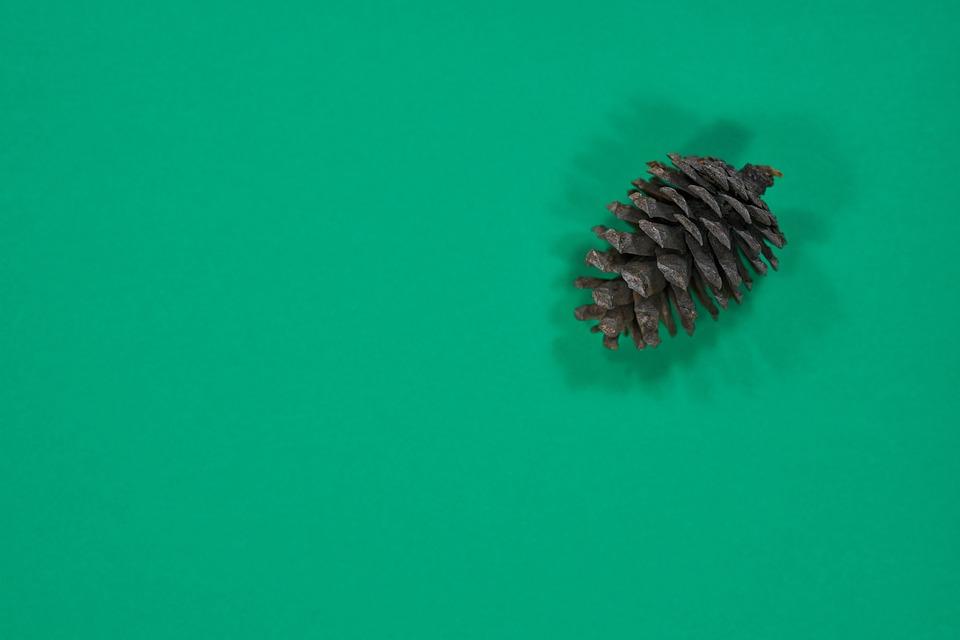 Green, Cone, Paper, Christmas, Celebration, Winter