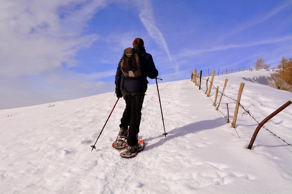 Snow, Winter, Adventure, Cold, Ice, Walk, Excursion