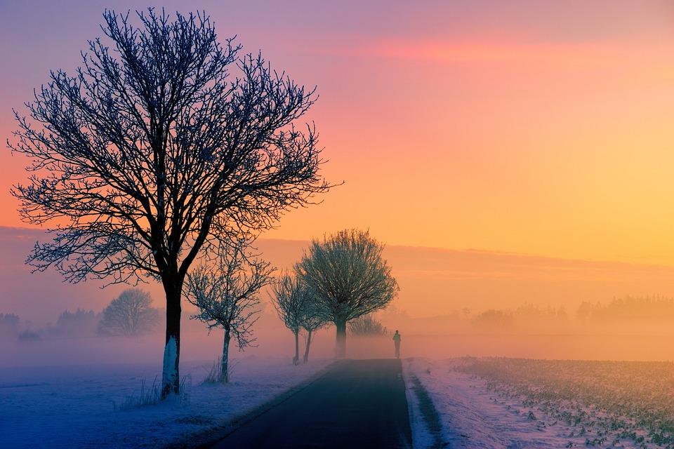 Winter, Fog, Dawn, Sunset, Nature, Landscape, Jogger