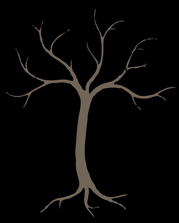 Tree, Winter, Grey, Perennial, Dried, No Leaves