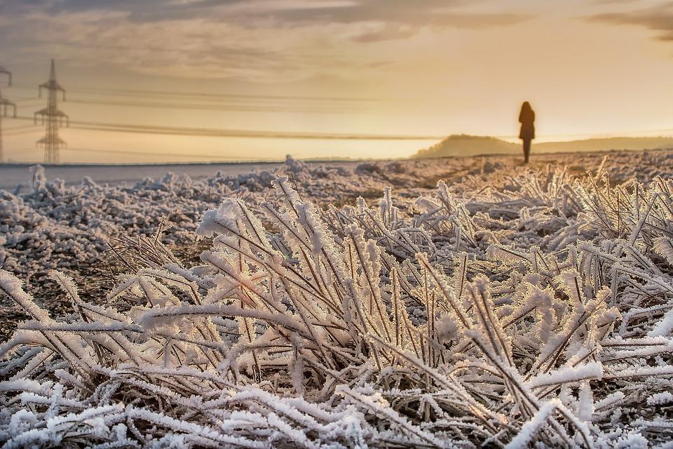 Nature, Landscape, Winter, Field, Person, Wanderer