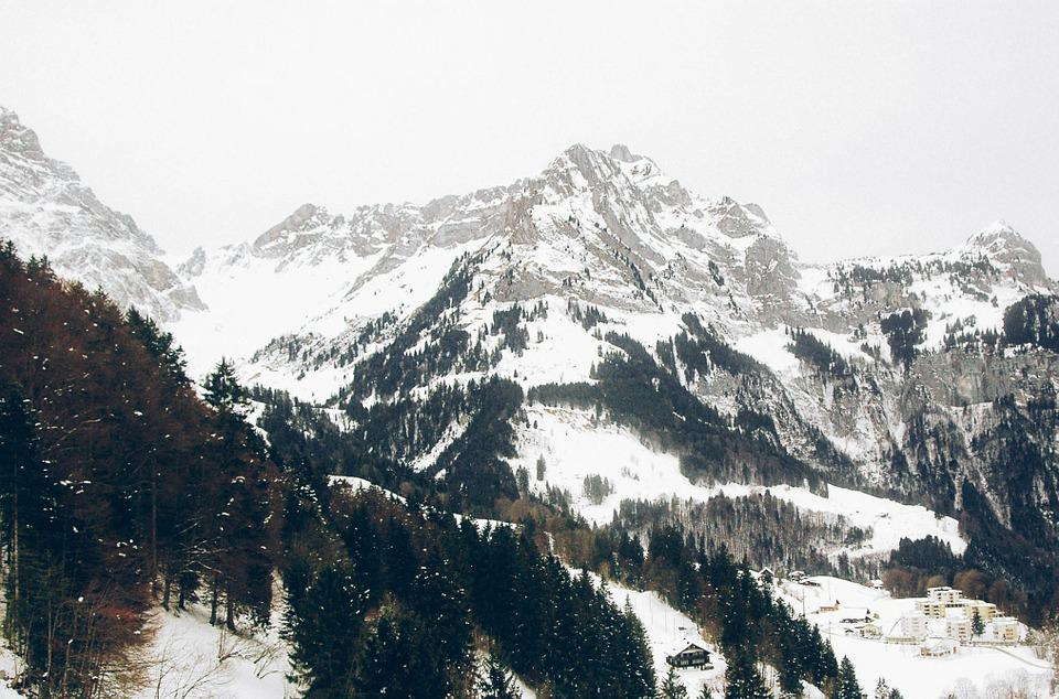 Mountains, Winter, Trees, Forest, Adventure, Travel