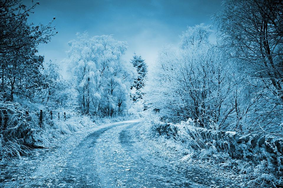 free photo winter frost cold frozen background snow road