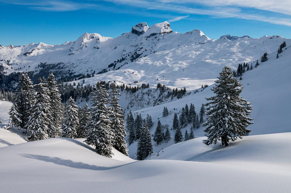 Winter, Hochybrig, Foothills Of The Alps, Swiss Alps