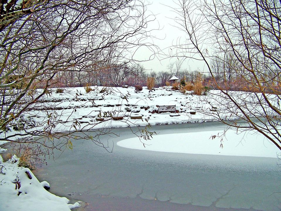 Frozen, Pond, Winter, Ice, Snow, Trees