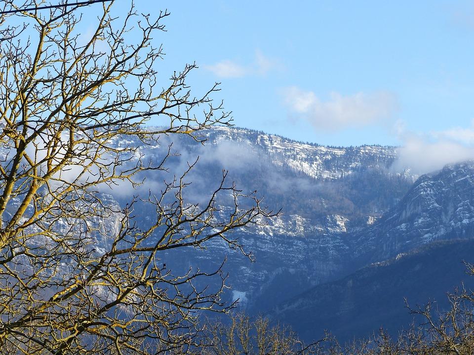 Landscape, View Vercors, Tree, Walnut, Winter