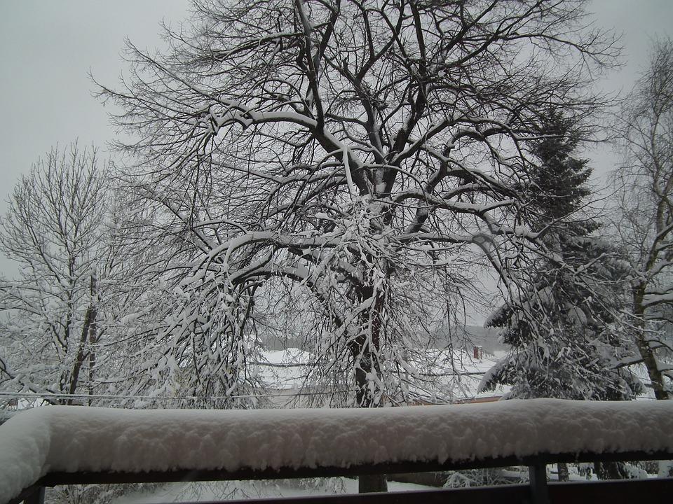 February, Snow, Winter Mood