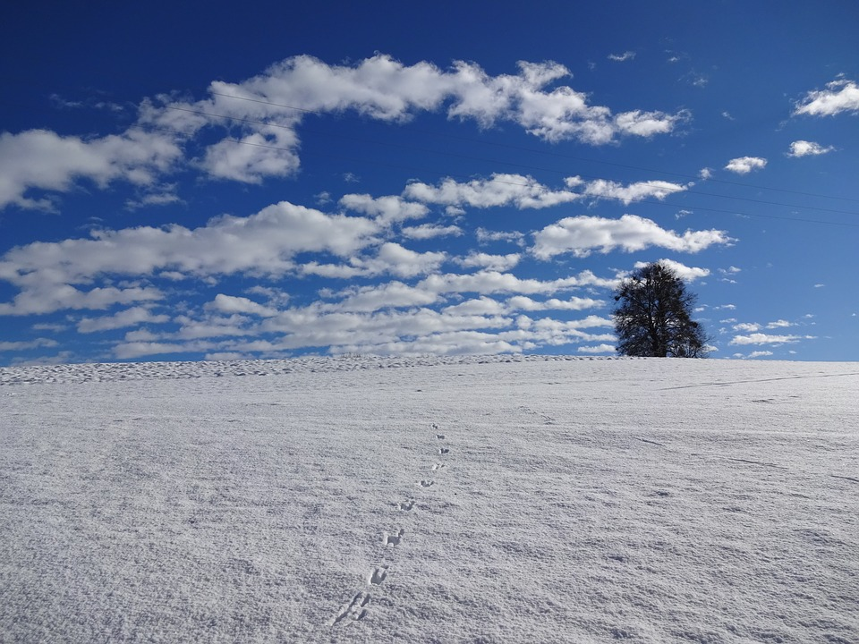 Natural Monument, Winter Mood, Magnificent Weather