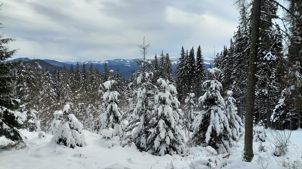 Winter, Mountains, Snow, Mountain, Cold