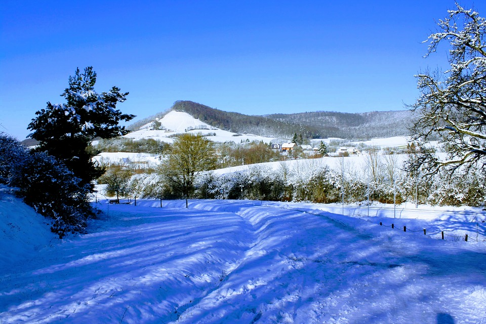 Snow, Winter, Cold, Nature, Tree, Landscape, Panorama