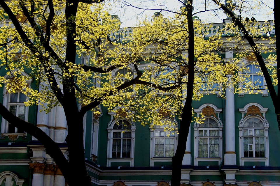 Winter Palace, Building, Historic, Trees, Light, Spring