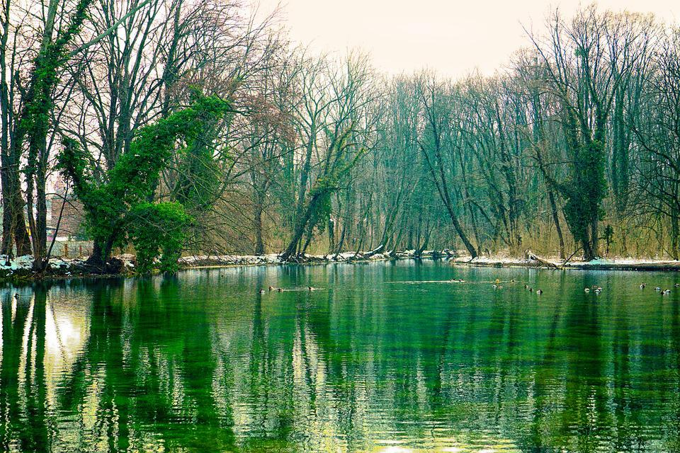 Waters, Nature, Reflection, River, Park, Winter