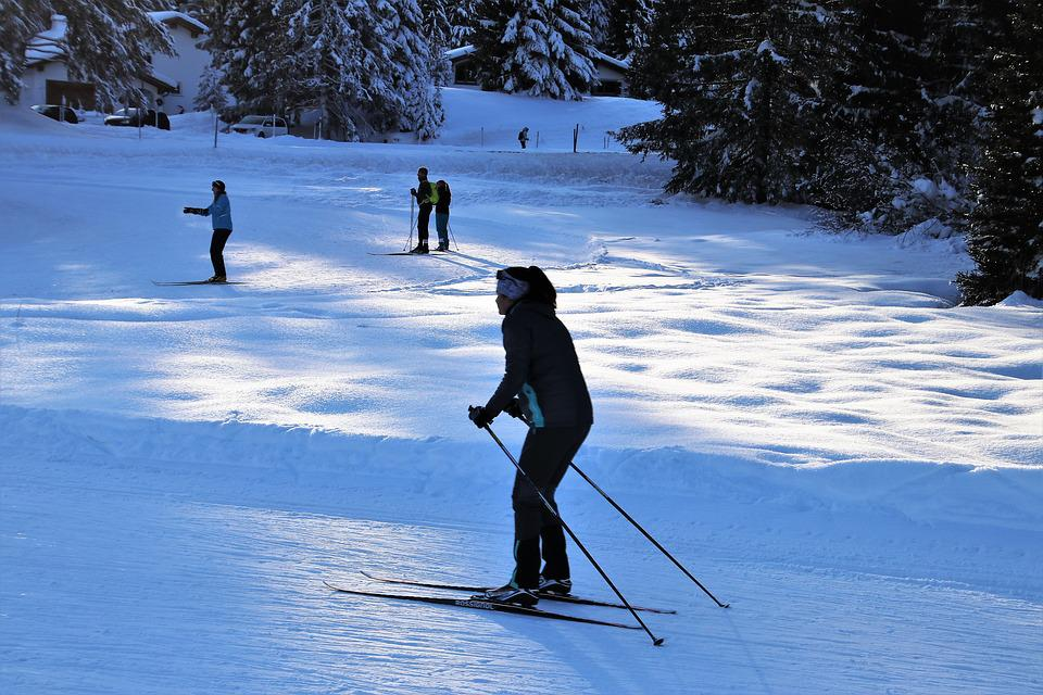 Skiers, Winter Sports, Snow, Winter, Relaxation