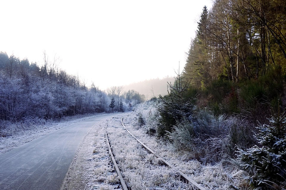 Forest, Winter, Seemed, Away, Snow, Trees, Nature