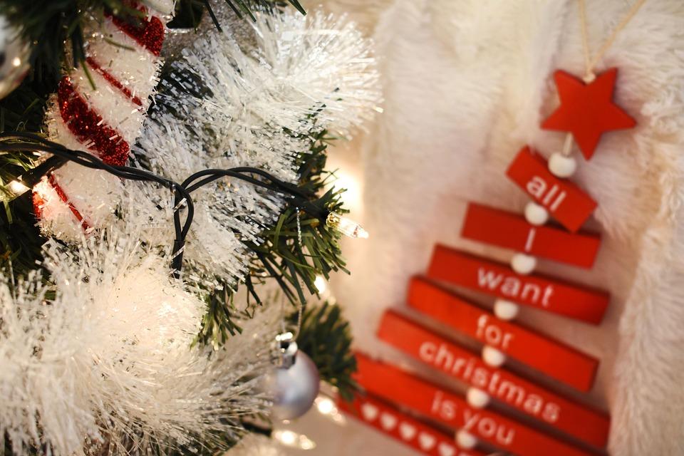 Christmas, Joy, Winter Time, Holiday, Cold, Snow