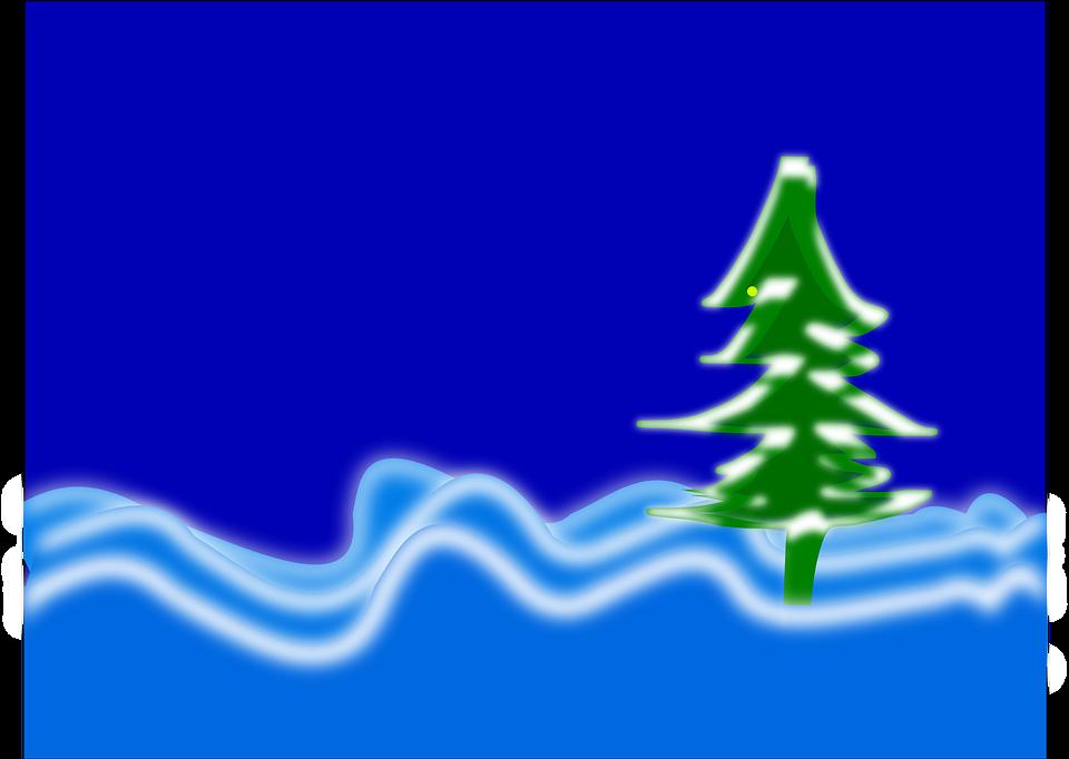 Blue, Tree, Winter, Snow