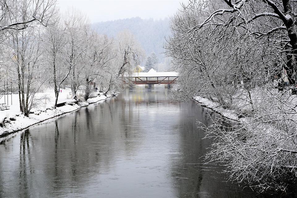 Winter, Snow, Waters, Tree, Nature, Tuttlingen