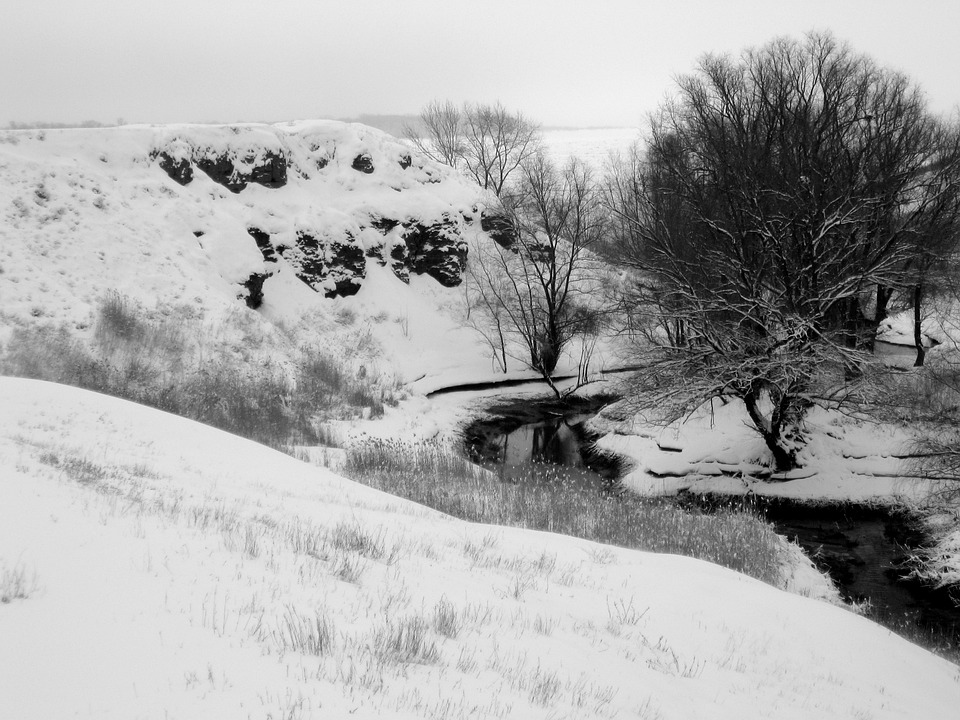 Winter, River, Snow, Landscape, Nature, Cold, Trees