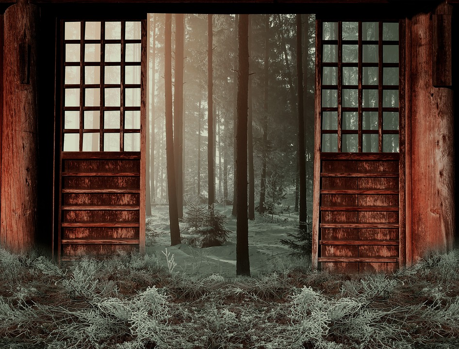 Winter, Woods, Door, Season, Outdoor, Forest, Cold