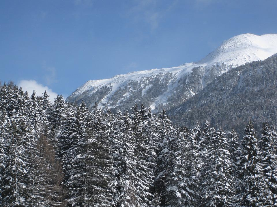 Mountains, Conifers, Snow Landscape, Wintry