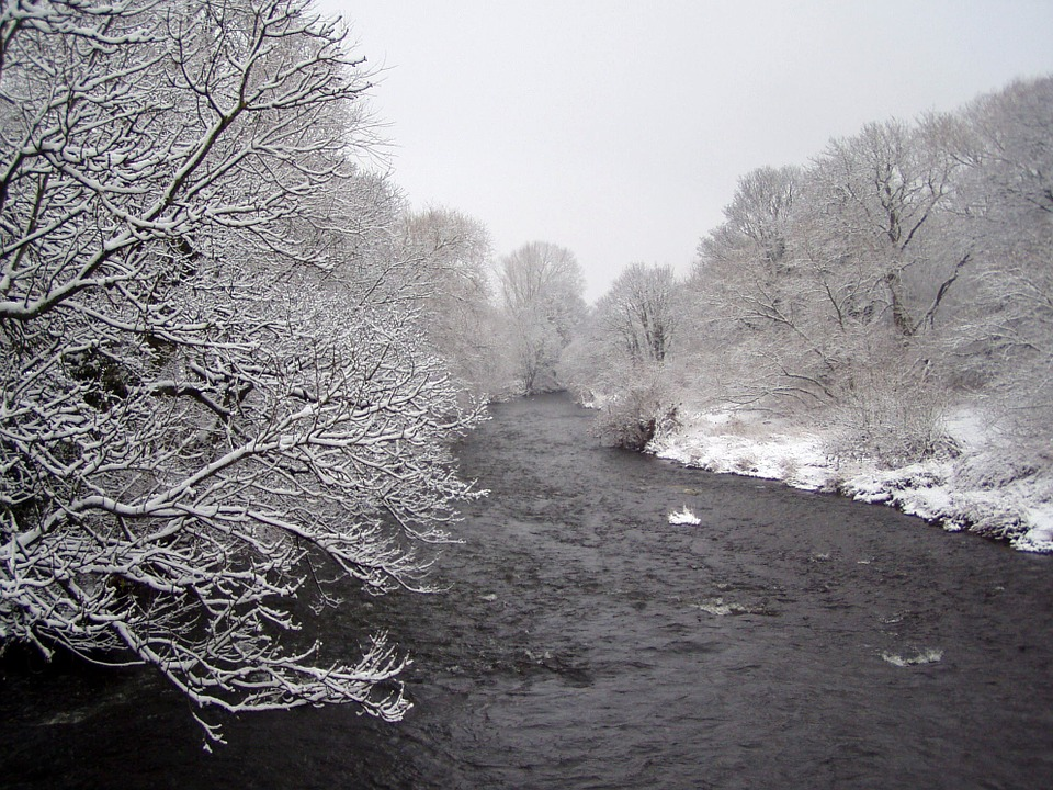 Wintry, Winter Wonderland, Snow, Ice, Nature, Trees