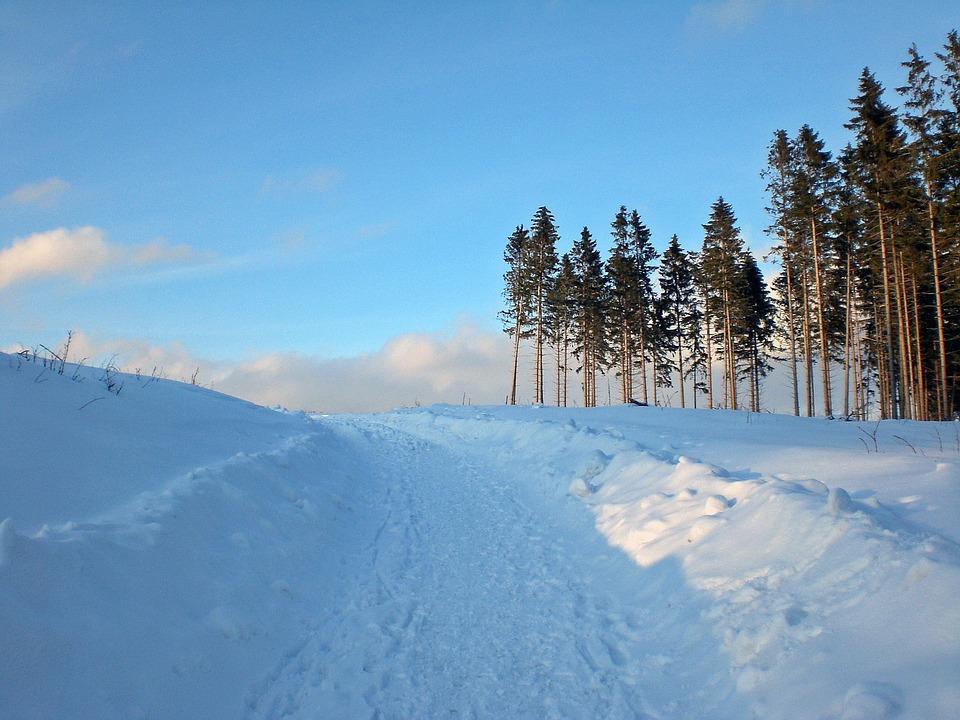 Wintry, Resin, Snow, Winter