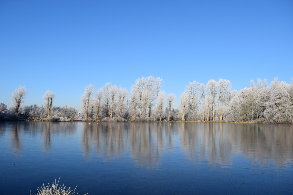 Cold, Winter, White, Lake, Wintry, Sunny