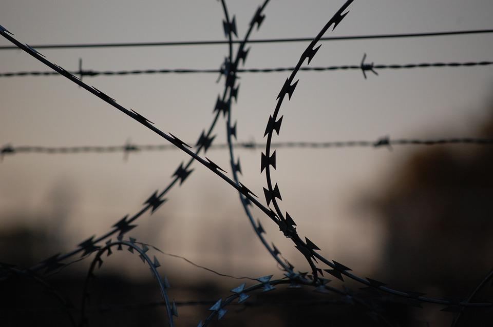 Barbed Wire, Wire, Court, Security, Prison