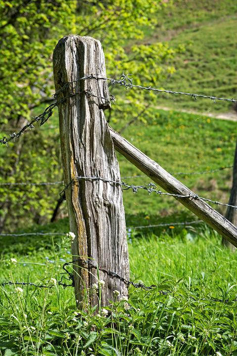 Free photo Wire Demarcation Pasture Fence Post Fence Old - Max Pixel