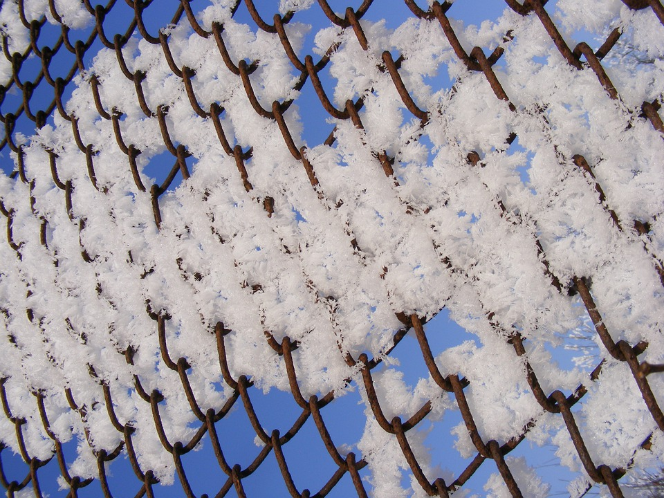 Cold, Fence, Frozen, Snow, White, Wire, Winter