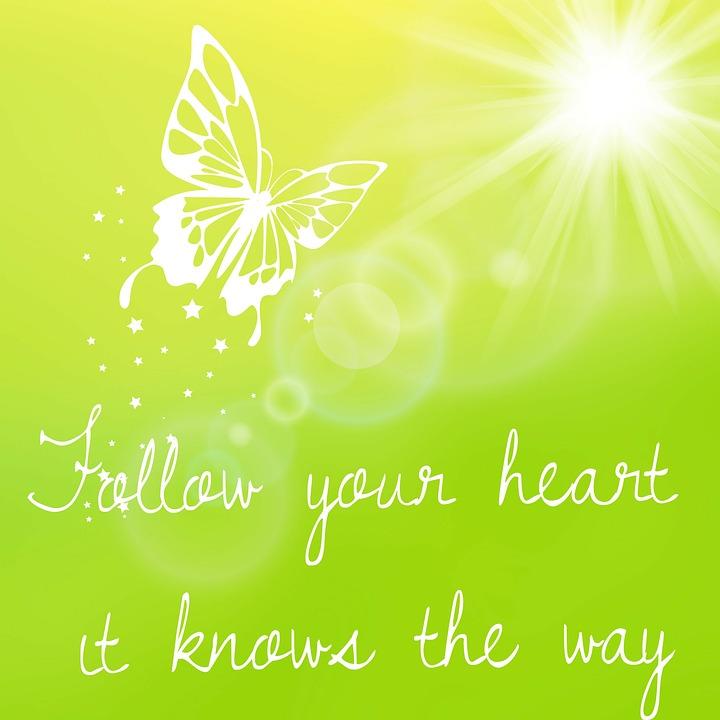 Your Heart String, Saying, Wisdom, Butterfly, Sun, Joy