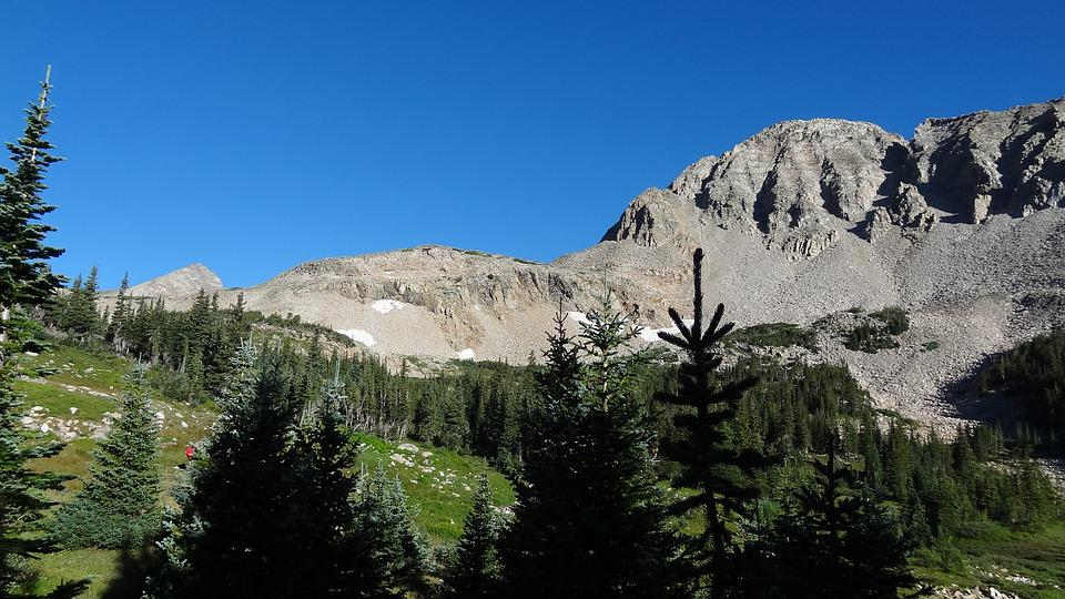 Subalpine Forest, Mountain Peak, With Lake