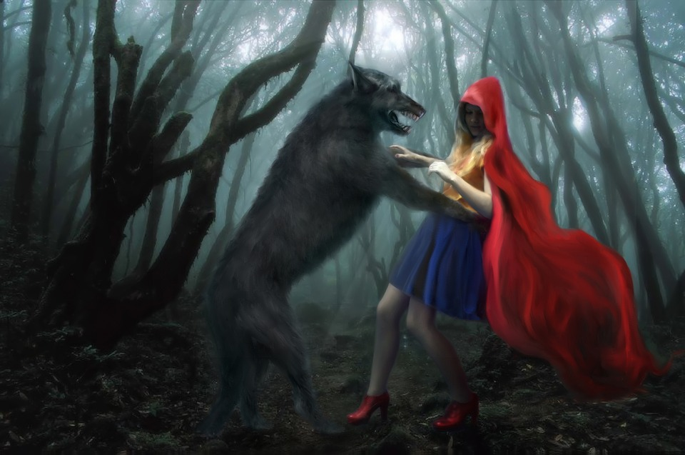 Little Red Riding Hood, Wolf, Forest, Story, Girl