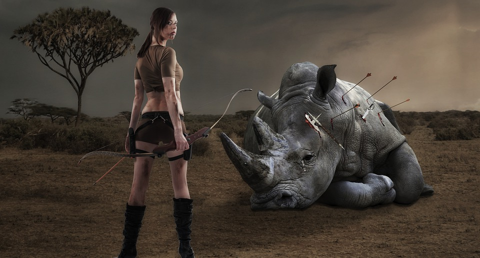 Rhino, Savannah, Woman, Safari, Big Game, Rhinoceros