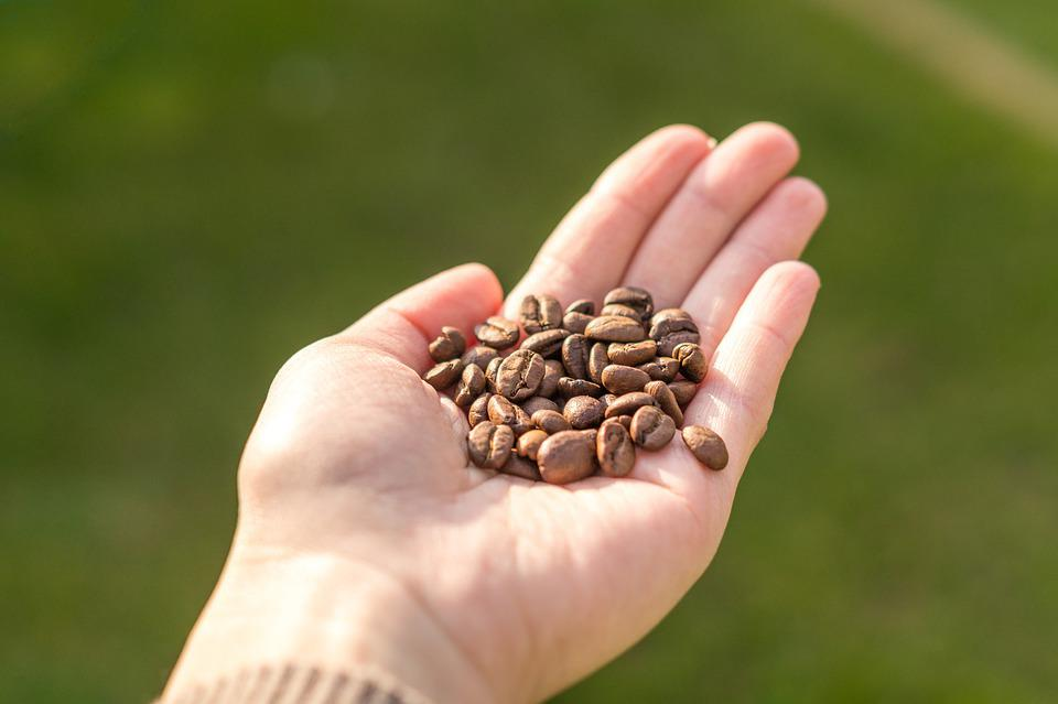 Grain, Coffee, Drink, Hand, Cup, Background, Woman