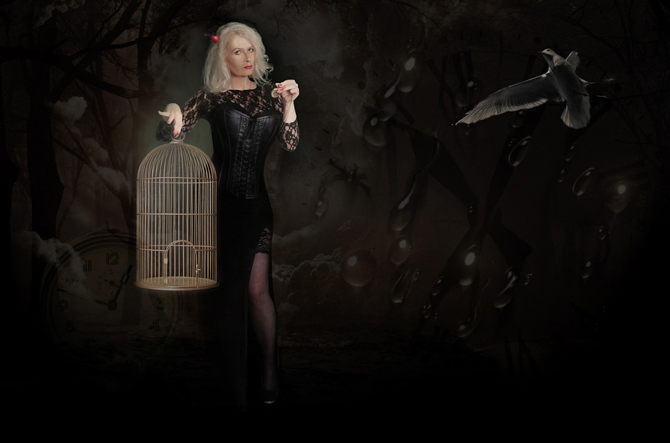 Mysticism, Fantasy, Woman, Bird Cage, Bird, On Time