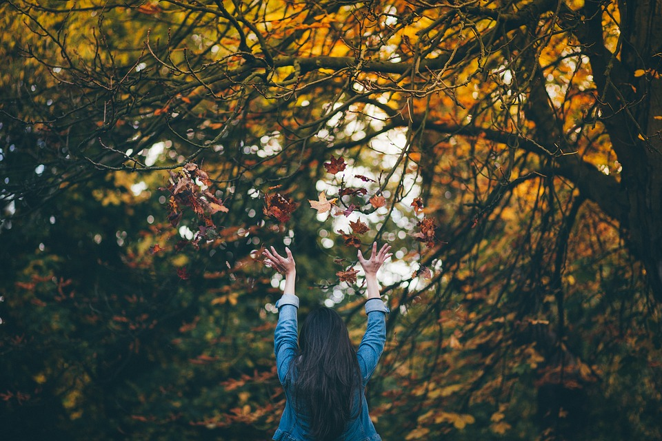 People, Woman, Girl, Tree, Plant, Nature, Autumn