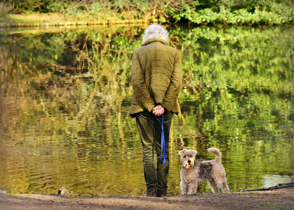 Woman, Elderly, Standing, Pond, Dog, Back