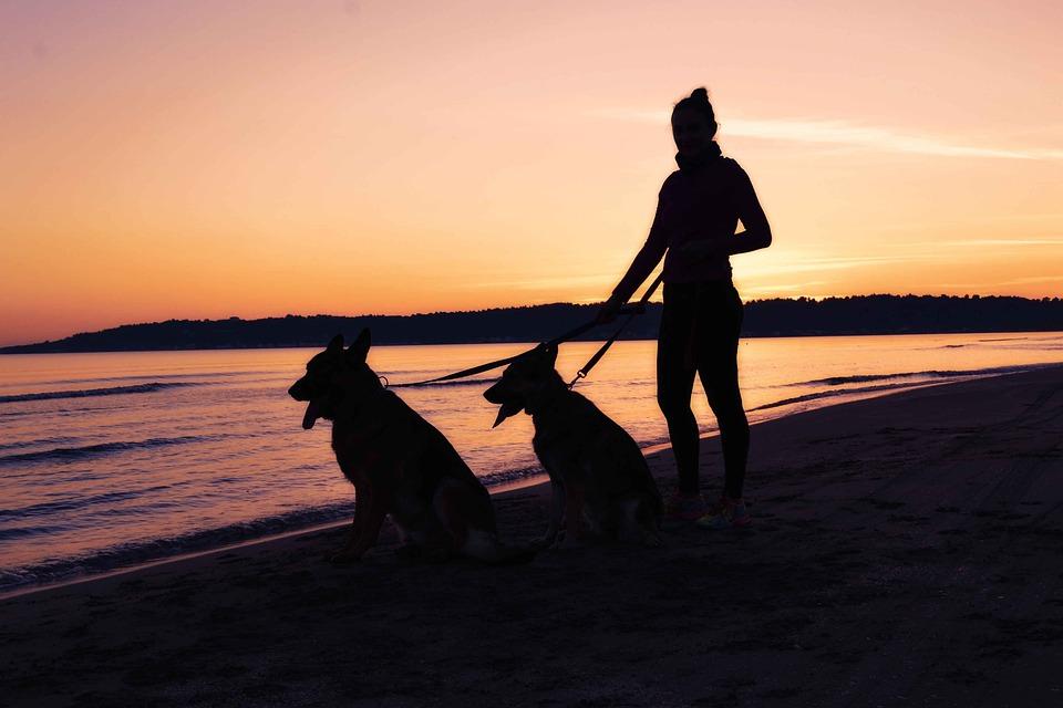 Woman Silhouette, Seaside Silhouette, Woman, Silhouette